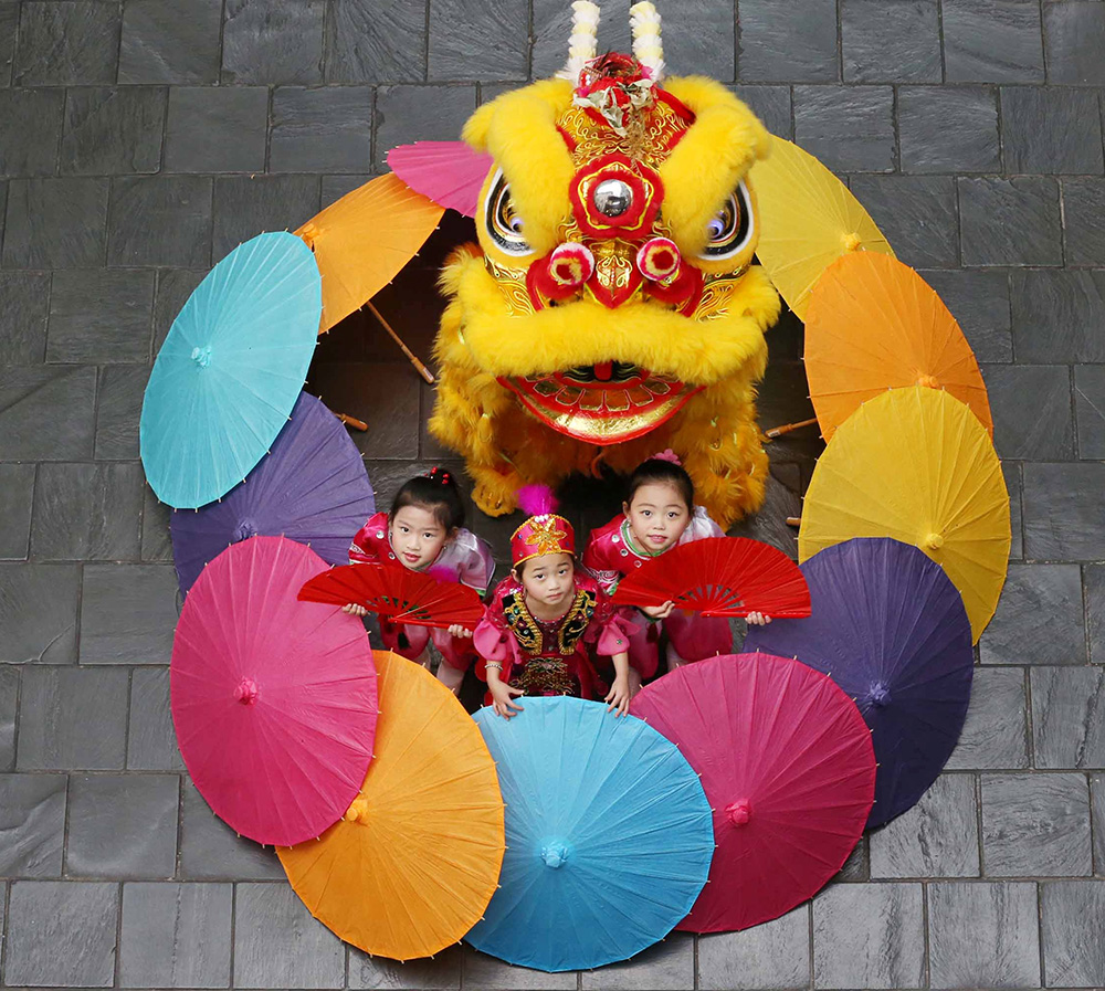 Dublin Chinese New Year Festival   Things to do in Dublin with kids
