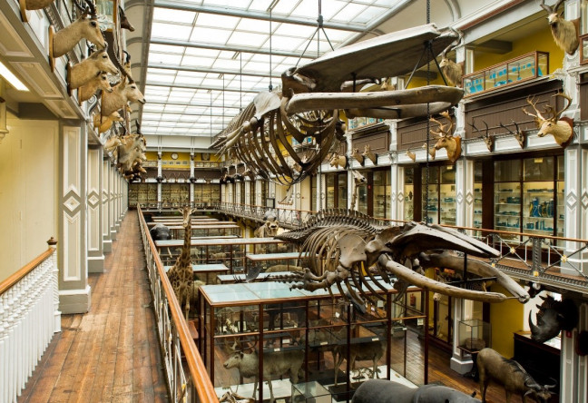 Things to do in County Dublin, Ireland - Museum Open Day - YourDaysOut