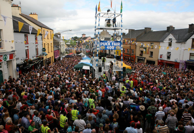 Things to do in County Kerry, Ireland - Puck Fair - YourDaysOut