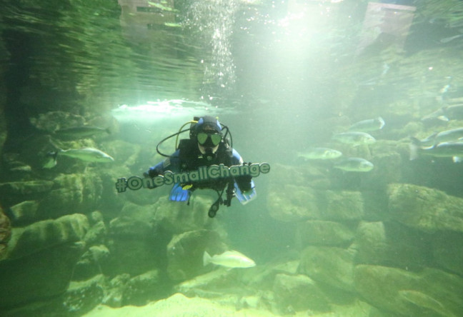 Things to do in , Ireland - Galway Atlantaquaria - YourDaysOut