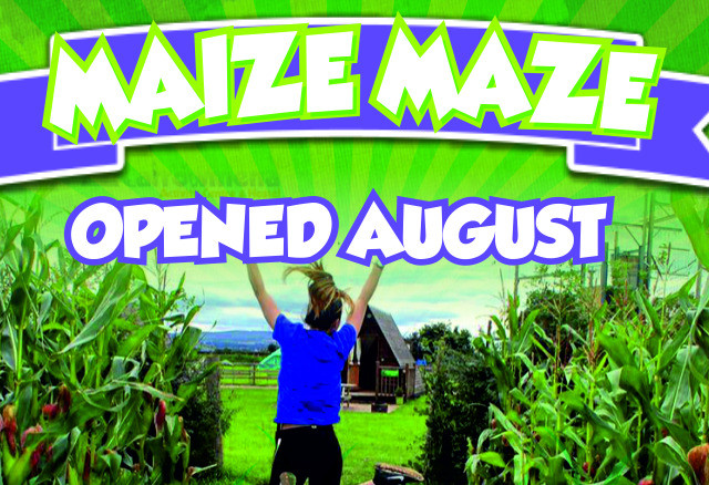 Things to do in Northern Ireland Limavady, United Kingdom - Carrowmena Day Maize Maze - YourDaysOut