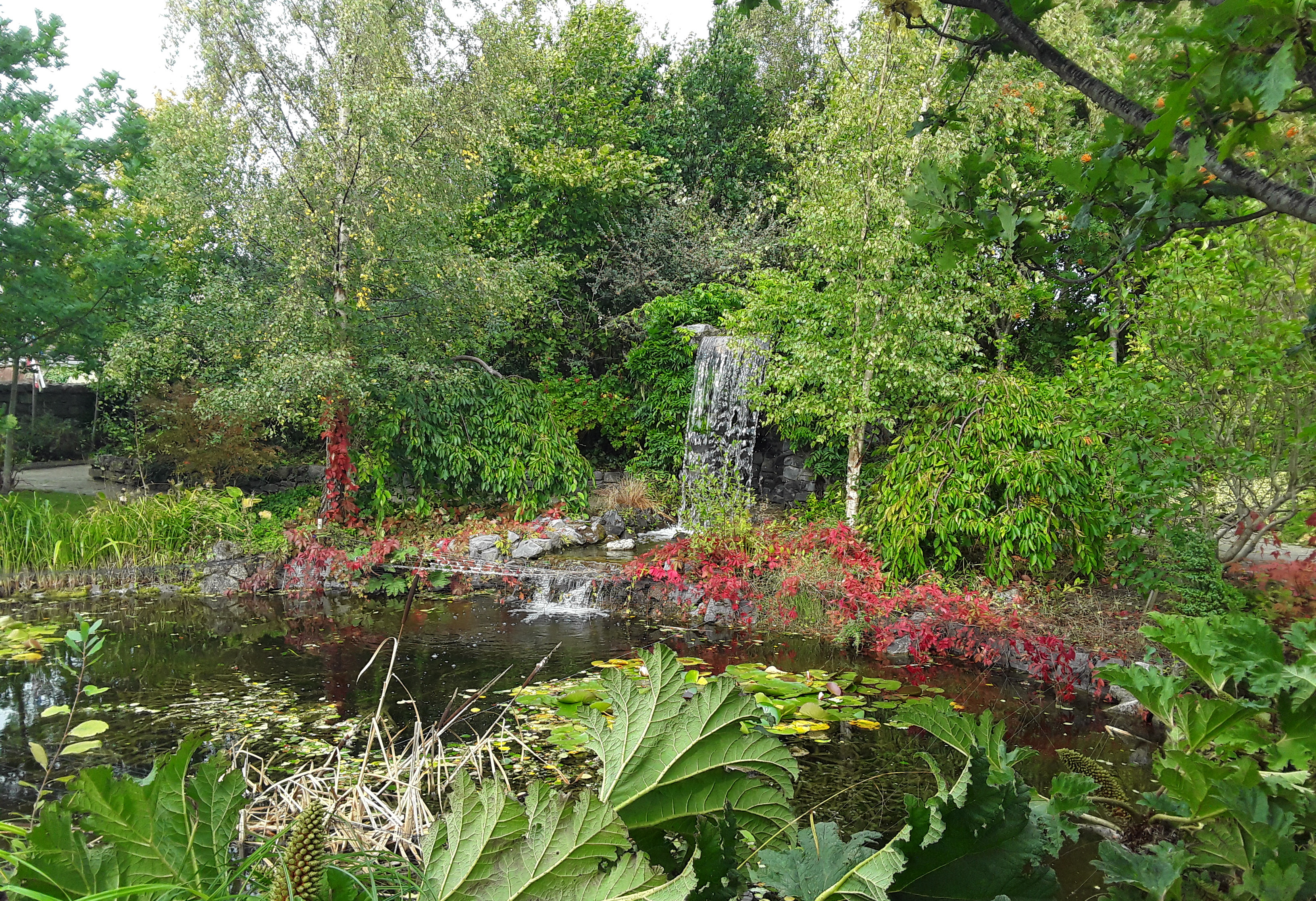 Things to do in County Carlow, Ireland - Delta Sensory Gardens - YourDaysOut - Photo 7