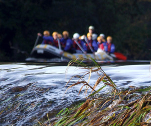 Things to do in County Dublin, Ireland - Rafting.ie - YourDaysOut