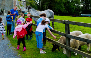 Things to do in County Roscommon, Ireland - Tullyboy Farm - YourDaysOut