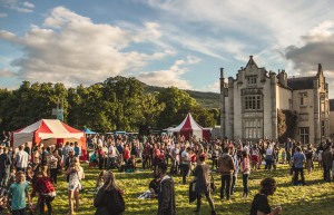 Things to do in County Wicklow, Ireland - Groove Festival - YourDaysOut