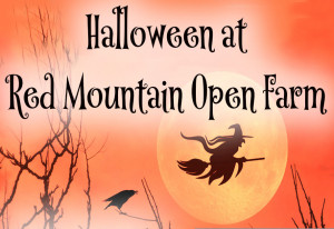 Things to do in County Meath, Ireland - Halloween @ Red Mountain Open Farm - YourDaysOut