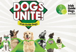 Things to do in County Dublin, Ireland - Dogs Unite - YourDaysOut
