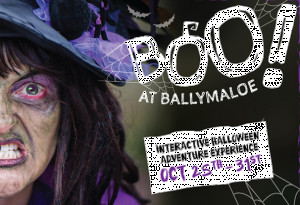 Things to do in County Cork, Ireland - Boo at Ballymaloe - YourDaysOut
