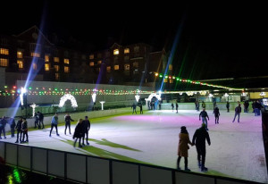 Win a free family pass to iSkate | Ice Skating at RDS, Dublin - YourDaysOut