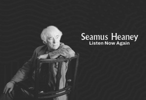 Things to do in County Dublin, Ireland - Public Tour of Seamus Heaney: Listen Now Again - YourDaysOut