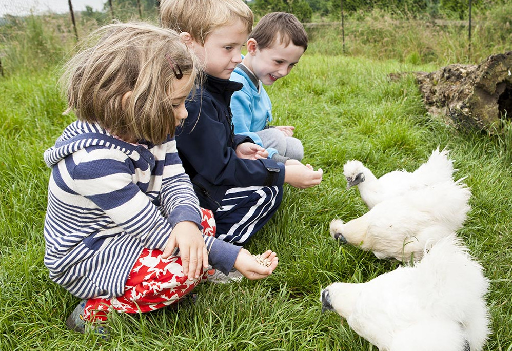 Things to do in County Meath, Ireland - Newgrange Farm - YourDaysOut