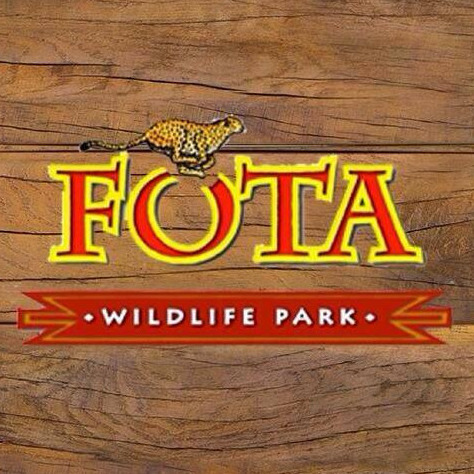 Art Workshop at Easter | Fota Wildlife Park logo